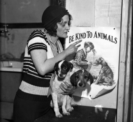 Promoting Chicago's Be Kind to Animals Week, 1932.